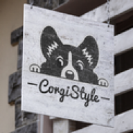 CorgiStyle