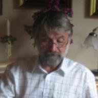 Edvin Vik